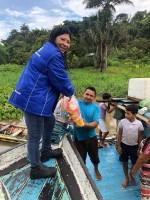 Projeto Amazonas Xingu - UMESC